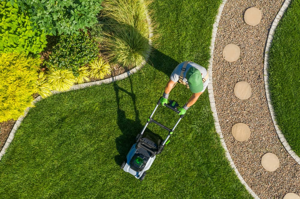 7 Essential Lawn Care Products